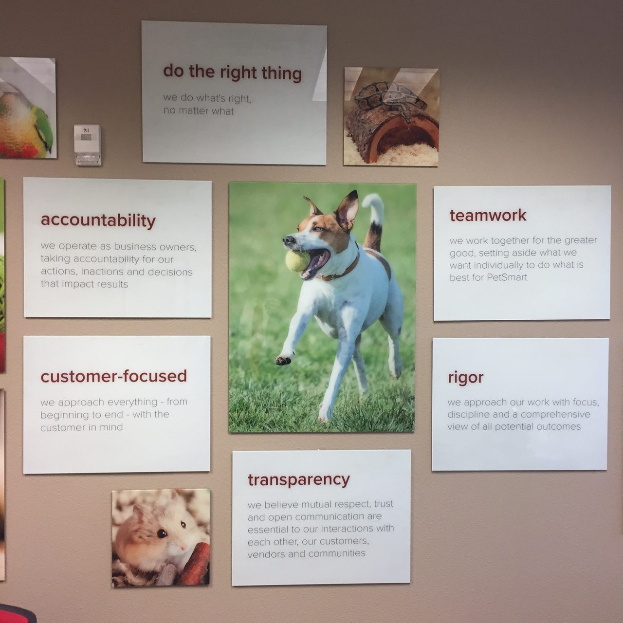 PetSmart Values Focus on the Shopper