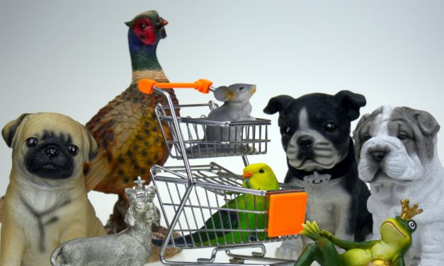 Where's the Shopper in PetSmart's Acquisition of Chewy.com?
