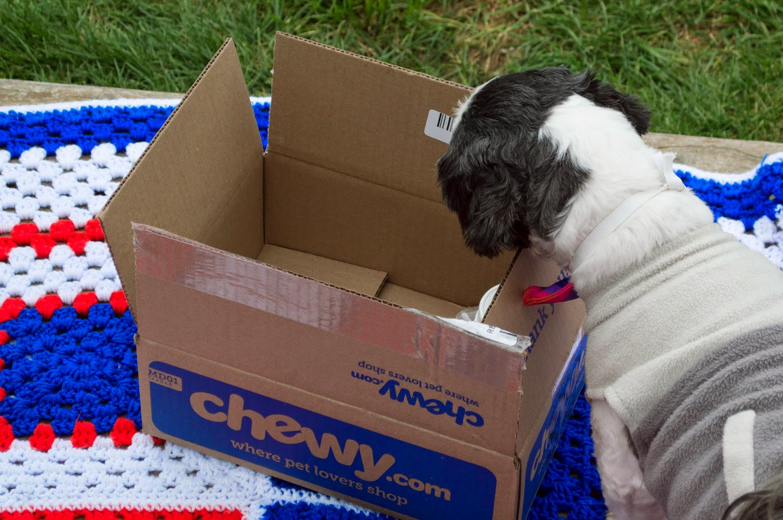 The value to Shoppers of the Chewy.com Buy Remains to be Seen.